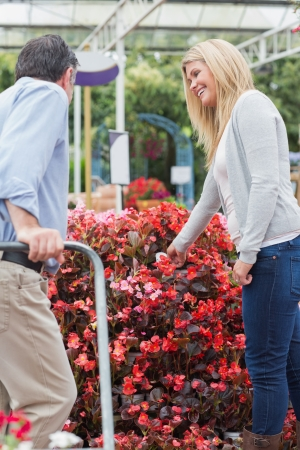 Couple talking while choosing flowers in garden center Stock Photo - 16078897