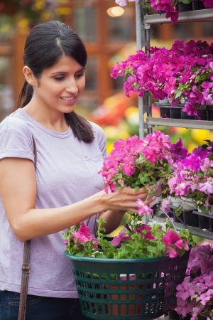 Woman choosing pink flower in garden center holding basket photo