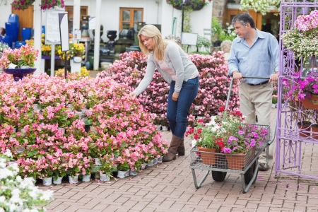 Man pushing the trolley while woman looking at flowers in garden center