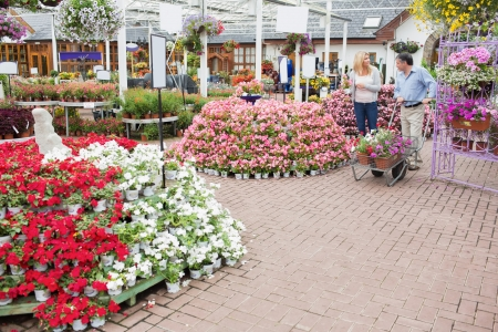 Outside of garden center with many types of plants and flowers and couple pushing a trolley Stock Photo - 16079648