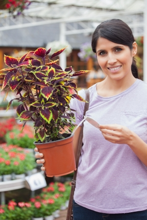 Woman reading the price of plant in garden center photo