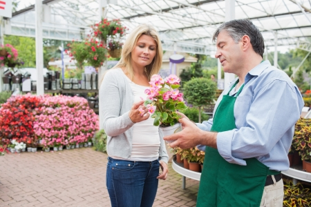 Woman talking to worker about plant in garden center Stock Photo - 16078032