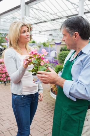 Employee talking to customer about plant in garden center Stock Photo - 16075568