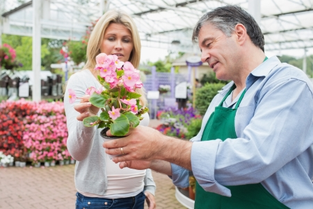 Woman talking to employee about plant in garden center Stock Photo - 16056967