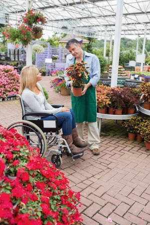 Woman in wheelchair looking at the plant in garden centre photo