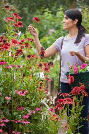 flower garden path: Woman holding a basket while looking at flowers in garden center