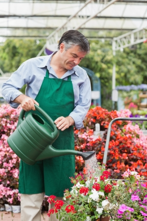 Gardener watering plants in the garden centre photo