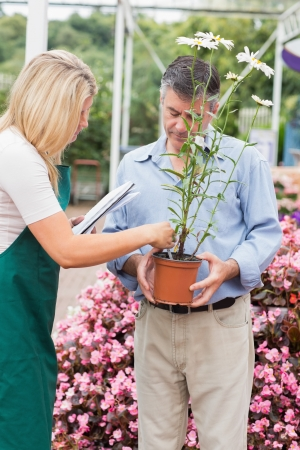 Woman reading the name of the flower while talking to customer in garden center Stock Photo - 16078561
