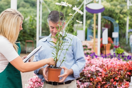 Assistant helping customer while choosing a plant in garden center Stock Photo - 16078508