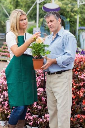 Florist explaining something to man in garden centre Stock Photo - 16079254