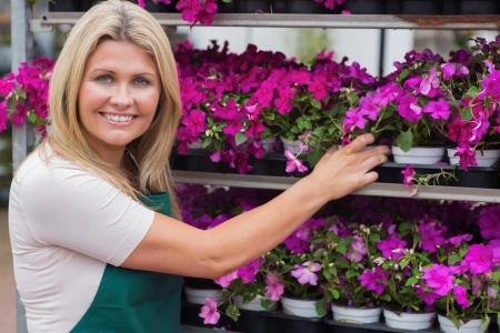 Woman working in garden center taking flowers from shelves  photo