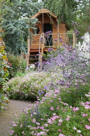 flower garden path: Garden of purple flowers with path and shed