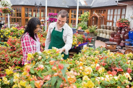 Customer and worker standing at a flowerbed while talking in garden center photo
