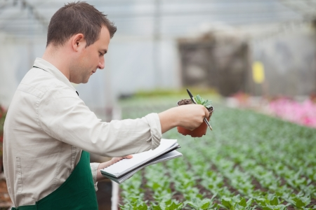 taking inventory: Man standing in greenhouse nursery and taking notes