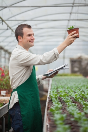 taking inventory: Gardener lookinghappily at seedling while taking notes in greenhouse nursery Stock Photo