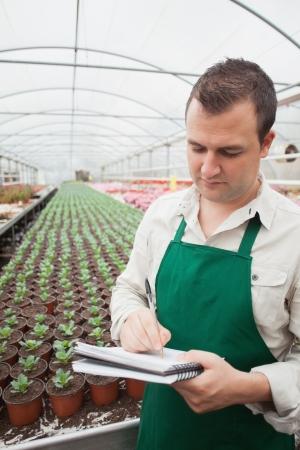 taking inventory: Greenhouse worker taking notes in seedlings in nursery