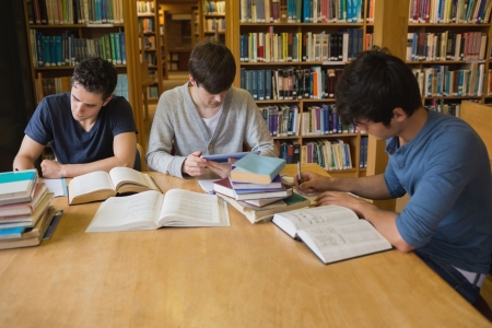 assignments: Students doing assignments in college library