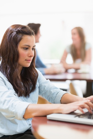 Woman sitting at the college cafe using laptop and concentrating Stock Photo - 16055789