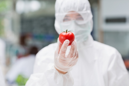 Woman standing at the laboratory wearing protection suit and holding a tomato  photo