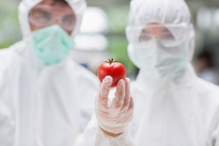 Two students standing at the laboratory looking at a tomato photo