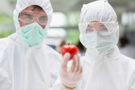 Two students standing at the laboratory wearing protection suits holding a tomato photo