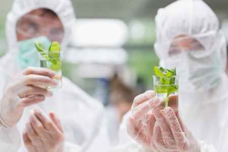 Two students standing at the laboratory wearing protective suits holding beakers with seedlings photo