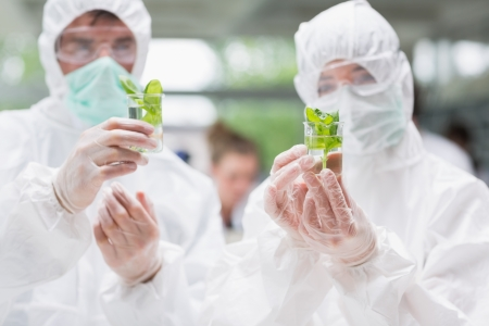 Students standing at the laboratory while holding beakers with plants wearing protective suits photo