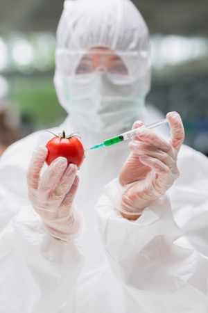 Student standing at the laboratory injecting a tomato wearing a protective suit photo