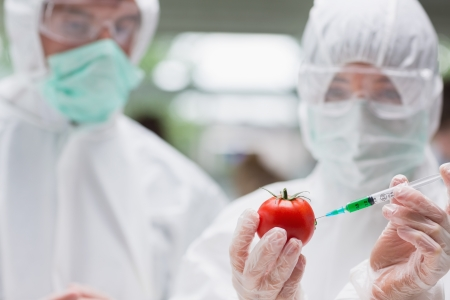 Students experimenting with a tomato in the lab wearing protective suits photo