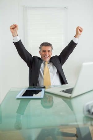 Business man enjoying his success and cheering in his office photo