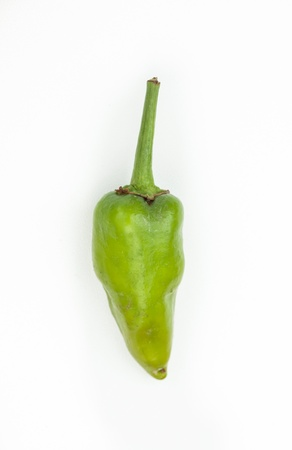 jalapeno pepper: Green jalapeno pepper