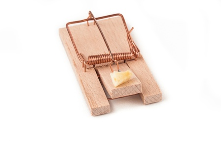 Mousetrap with cheese on a white background photo