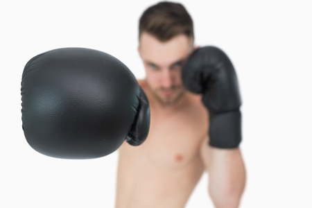 Portrait of young male boxer punching over white background photo