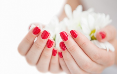 manicured hands: Close-up of manicured hands holding flowers at spa center