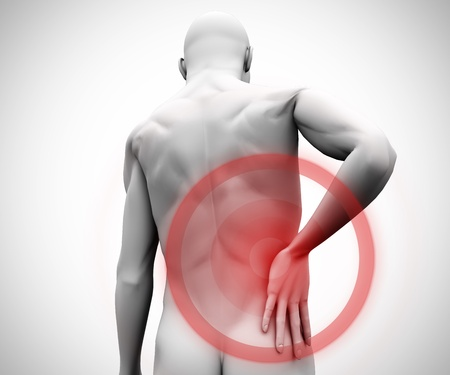 Digital figure with highlighted back pain photo