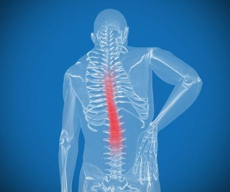 orthopaedics: Esqueleto transparente digital que tiene dolor en su espalda contra un fondo azul Foto de archivo