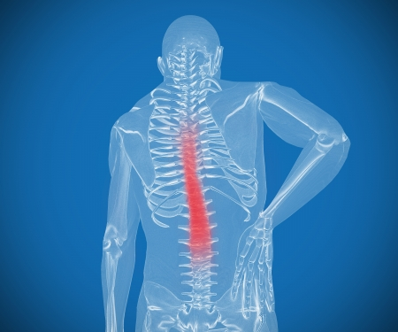 orthopedics: Transparent digital skeleton having pain on his back against a blue background