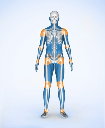 Body Joints Stock Photos. Royalty Free Body Joints Images