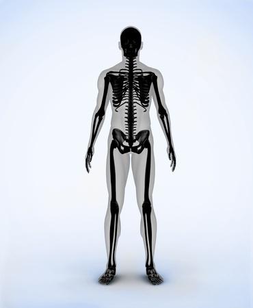 Black digital skeleton body standing photo