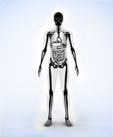 Black digital skeleton body standing photo