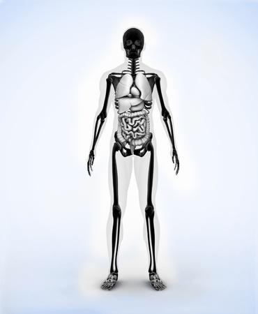 large skull: Black digital skeleton body standing