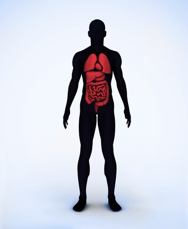 Black and red digital body standing with visible organs Stock Photo - 18116116