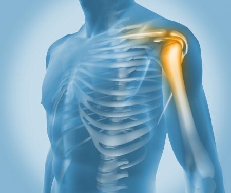 orthop�die: Gros plan d'un corps bleu num�rique dans un contexte num�rique