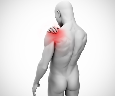 highlighted: Highlighted shoulder joint of human figure on white background