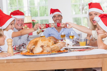 Siblings pulling a christmas cracker at christmas dinner photo