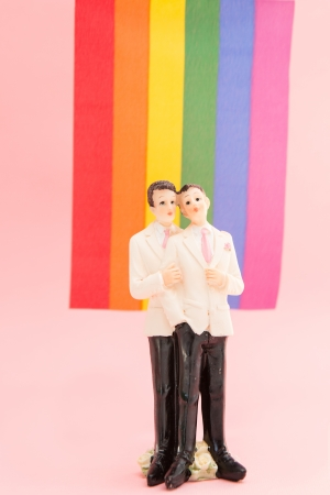 Gay groom cake toppers in front of rainbow flag on pink background photo