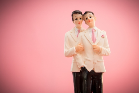 bisexual: Gay groom cake toppers on pink background