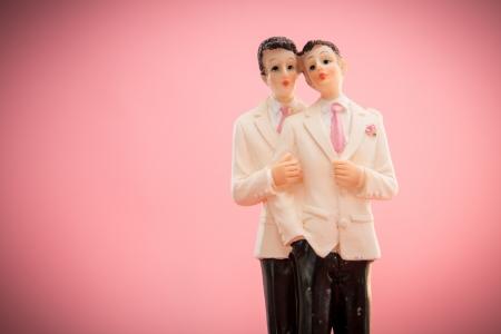 lesbianas: Gay toppers de la torta del novio en fondo rosado