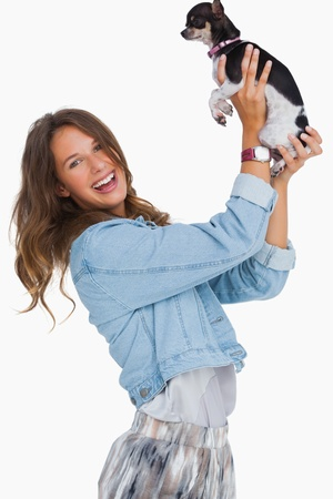 Happy woman lifting her chihuahua on white background photo