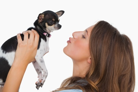 Happy woman looking at her chihuahua on white background photo